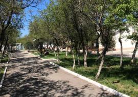 GNEZDO - Крым Орловка  гостевой дом