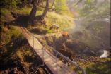 Крым, пос. Зеленогорье   Крым отдых в горах   бассейн снять дом